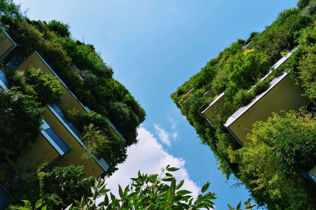 green building statistics